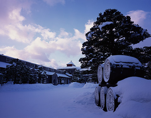 Nikka's Yoichi distillery is known for its rich, peaty whiskies